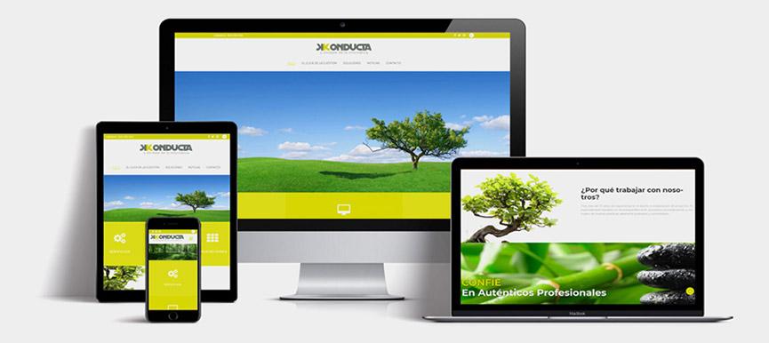Actualizamos nuestra web